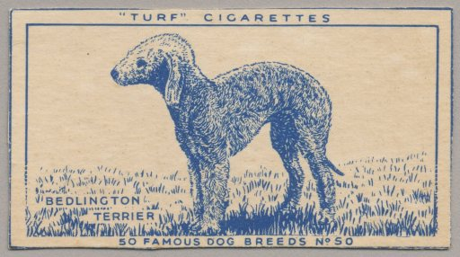 %22Turf'Cigarettes(No.50)2