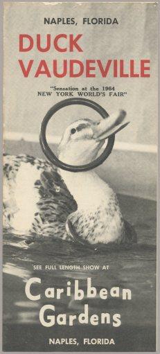 DuckVaudeville