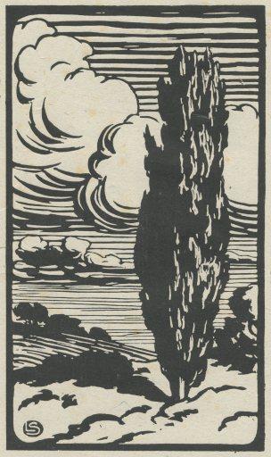 LS(cypress)