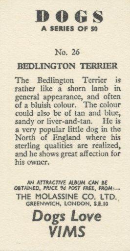 BedlingtonNo.26(B)