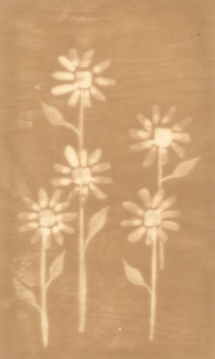 Flowers(back) copy