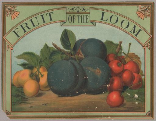 FruitoftheLoom2
