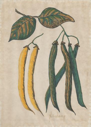 Beans(400) copy
